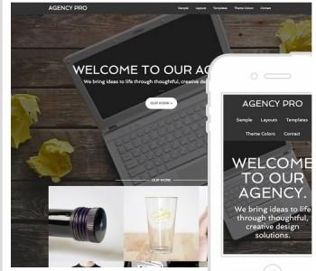 Agency Pro Web Design