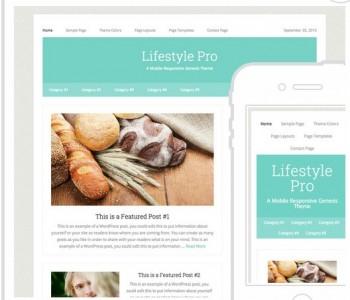 lifestyle Pro Web Design Gold Coast